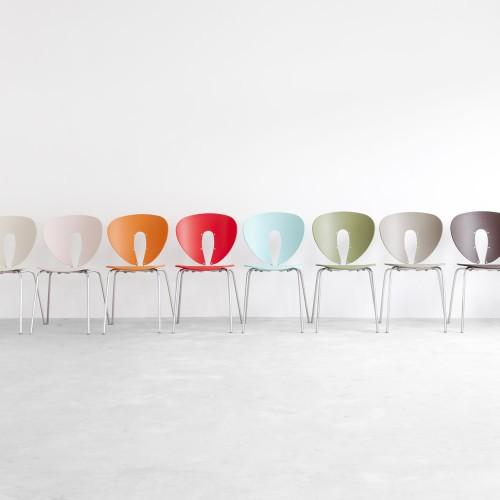 Globus Colouricious