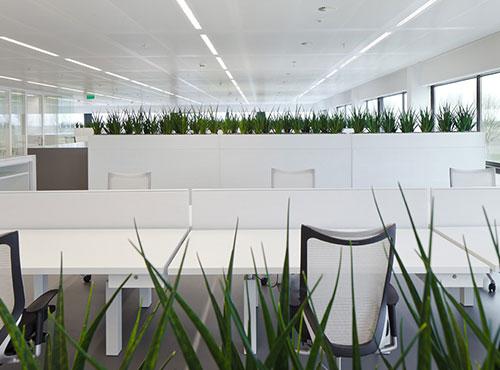Áreas verdes en la oficina