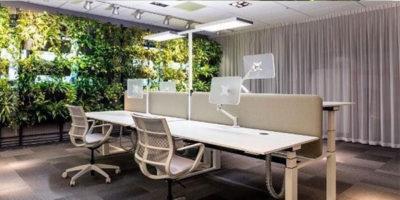 Zonas verdes en la oficina